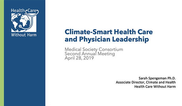 Climate-Smart Health Care and Physician Leadership