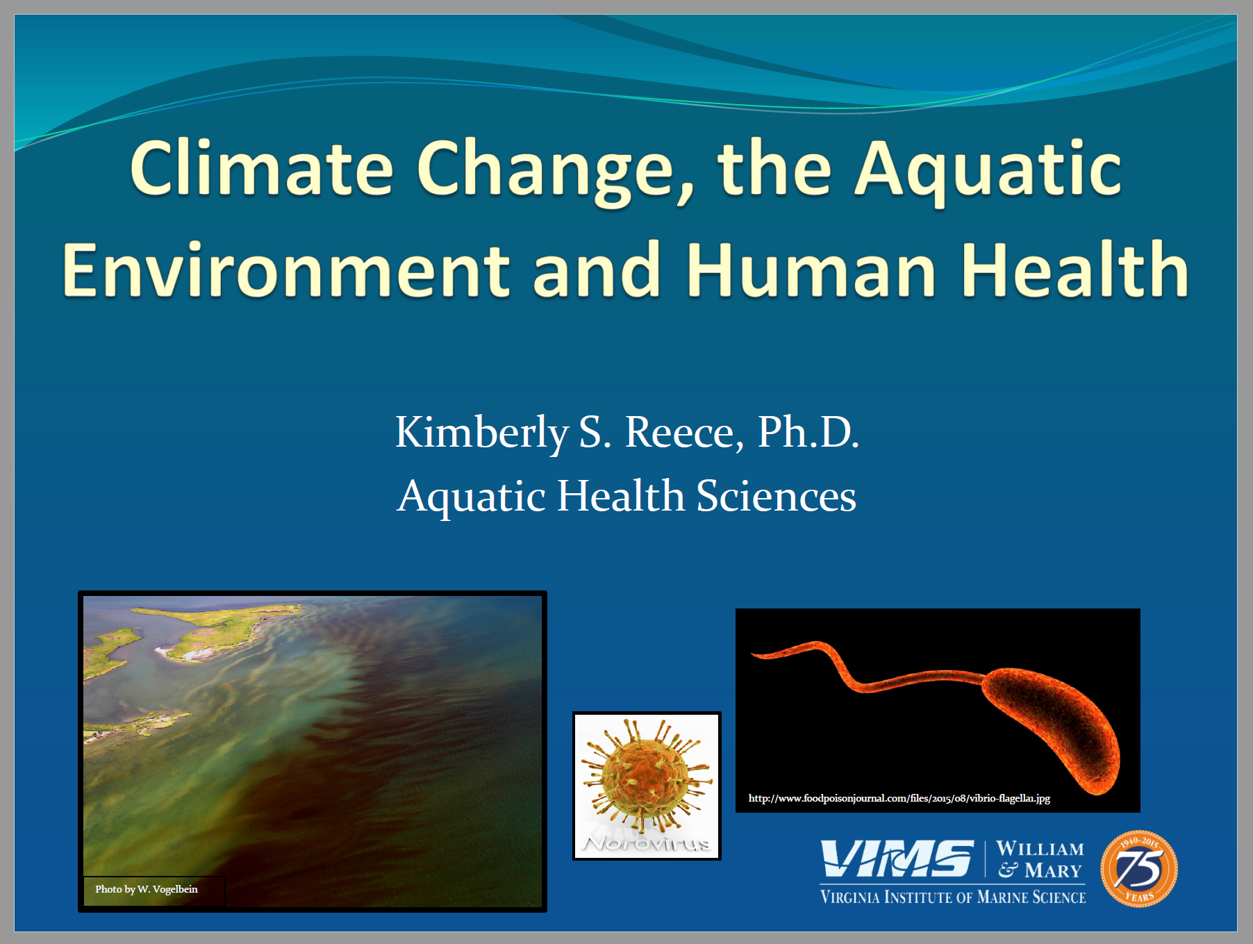 Climate Change, the Aquatic Environment and Human Health