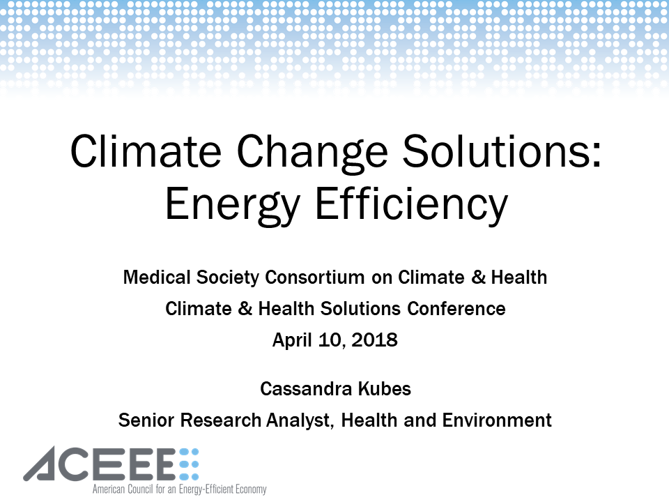 Climate Change Solutions: Pricing Carbon, Sequestering Carbon through Biodiversity, Boosting Energy Efficiency