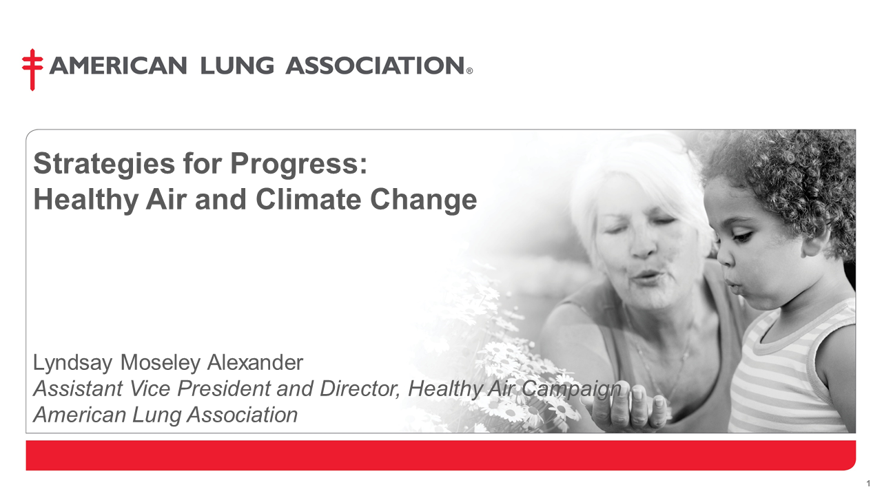Strategies for Progress: Healthy Air and Climate Change